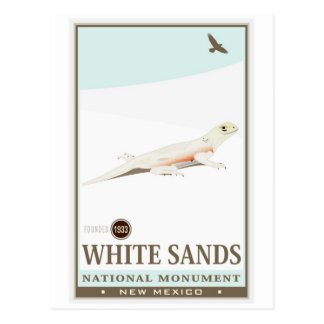 White Sands National Monument 2 Postcard