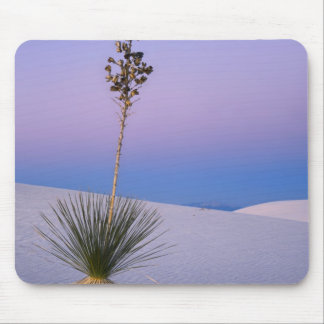 WHITE SANDS NATIONAL MONUMENT, NEW MEXICO. MOUSE MAT