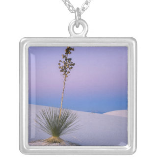 WHITE SANDS NATIONAL MONUMENT, NEW MEXICO. SILVER PLATED NECKLACE