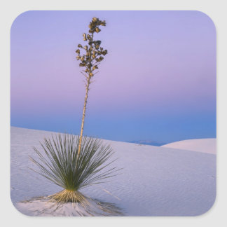 WHITE SANDS NATIONAL MONUMENT, NEW MEXICO. SQUARE STICKER