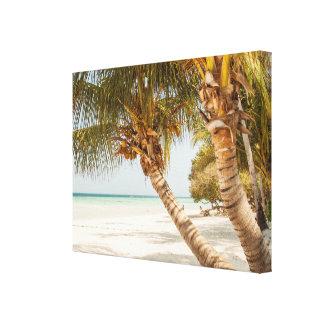 White Sandy Beach and Palm Trees Canvas Print