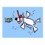 White Schnauzer Snorkelling Under Blue Sea Postcard