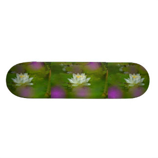 white sea-rose in the pond flowering, photo extrud skate board deck