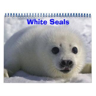White Seals! Wall Calendar