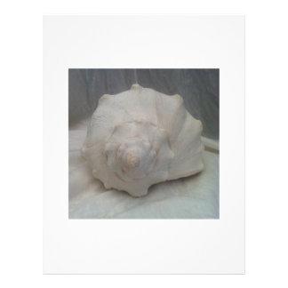 White Seashell 21.5 Cm X 28 Cm Flyer