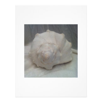 White Seashell Custom Flyer