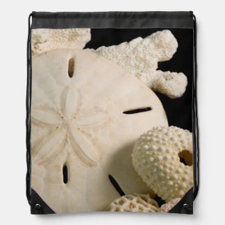 White Seashells And Sand Dollar Drawstring Bag