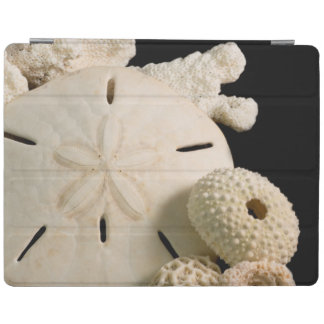 White Seashells And Sand Dollar iPad Cover