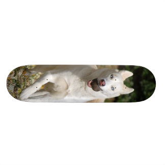 White Siberian husky skateboard - Customized