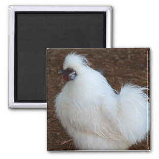 White Silkie Chicken Magnet