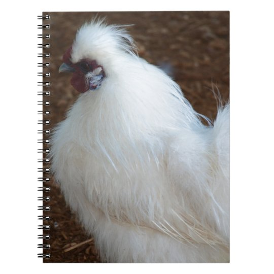 White Silkie Chicken Notebook