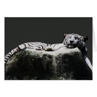 White snow Tiger - Big Cat sleeping Card