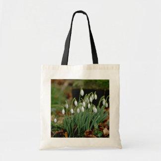 white Snowdrops flowers