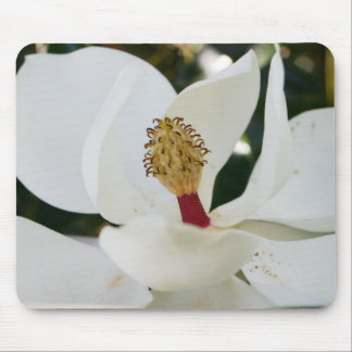 White southern magnolia flower blossom unique mouse pad