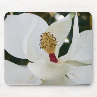 White southern magnolia flower blossom unique mouse pad