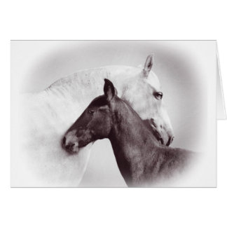 White Spanish Andalusian mare with black foal Card