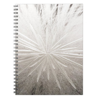 White Spark Notebooks