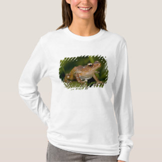 White Spotted Frog, Nytixalus pictus, Native T-Shirt