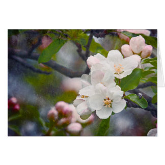 White Spring Easter Flowers Blank Greeting Card