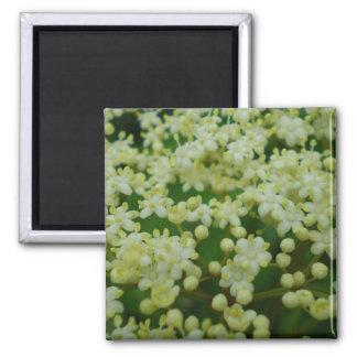 White Spring Fridge Magnets