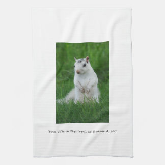 White Squirrel of Brevard Tea Towel