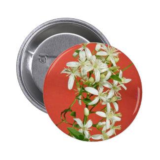 white Star jasmine (Jasminum pubescens) flowers 6 Cm Round Badge