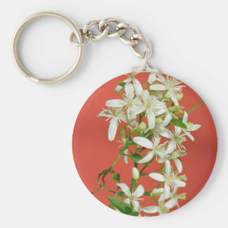 white Star jasmine (Jasminum pubescens) flowers Basic Round Button Key Ring
