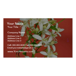 white Star jasmine (Jasminum pubescens) flowers Pack Of Standard Business Cards