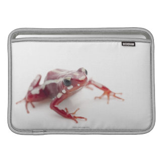 White-striped Poison Dart Frog 2 MacBook Sleeve