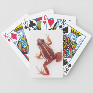 White-striped Poison Dart Frog Bicycle Playing Cards