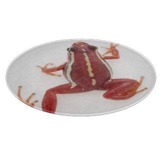 White-striped Poison Dart Frog Cutting Board