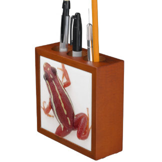 White-striped Poison Dart Frog Desk Organiser