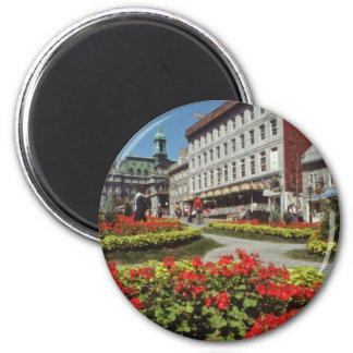 White Summer blooms, Montreal flowers 6 Cm Round Magnet