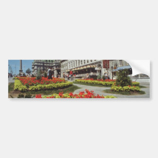 White Summer blooms, Montreal flowers Bumper Stickers