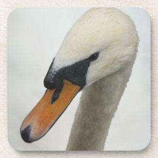 White Swan Coaster