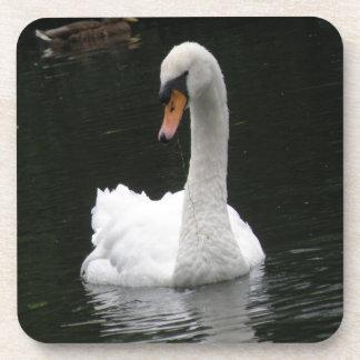 White Swan Cork Coaster