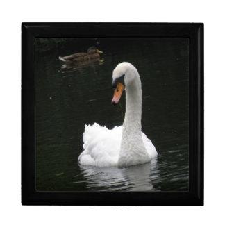White Swan Gift Box