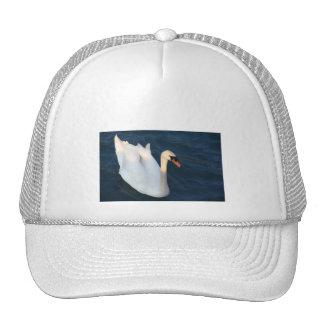 White swan - Hat