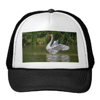 White Swan Mesh Hats