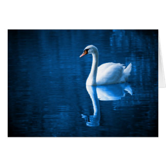 White Swan on Blue Waters Note Card