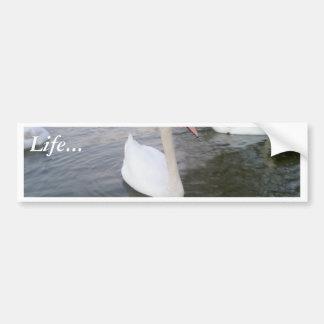 White Swans Bumper Stickers
