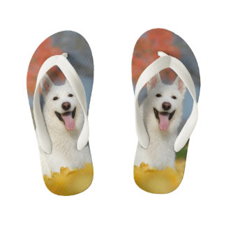 White Swiss Shepherd Dog Photo - Cute Furry Friend Flip Flops