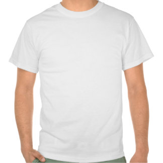 White t-shirt with pair of carrier pigeons