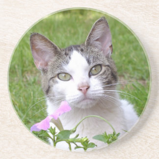 White Tabby Cat and Pink Petunia Coaster