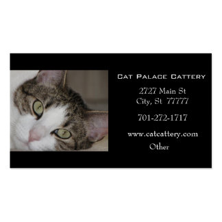 White Tabby Cat Business Card