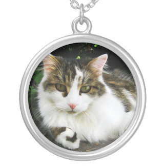White Tabby Necklace