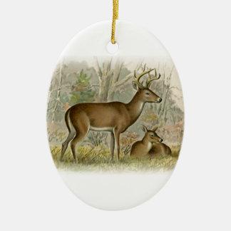 White Tail Deer Buck - Doe Christmas Ornament