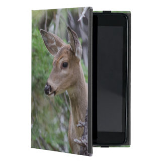 White Tail Deer Portrait Fishercap Lake Covers For iPad Mini
