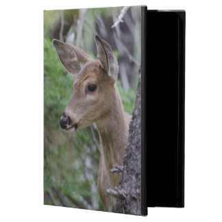 White Tail Deer Portrait Fishercap Lake iPad Air Covers