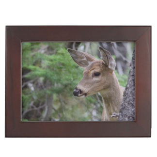 White Tail Deer Portrait Fishercap Lake Keepsake Box